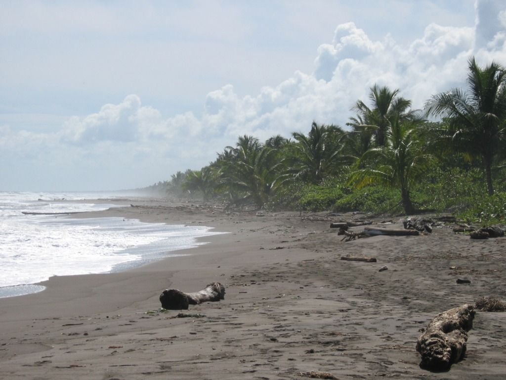 Tortuguero Costa Rica Oh I Wish Could Still Be Playing On