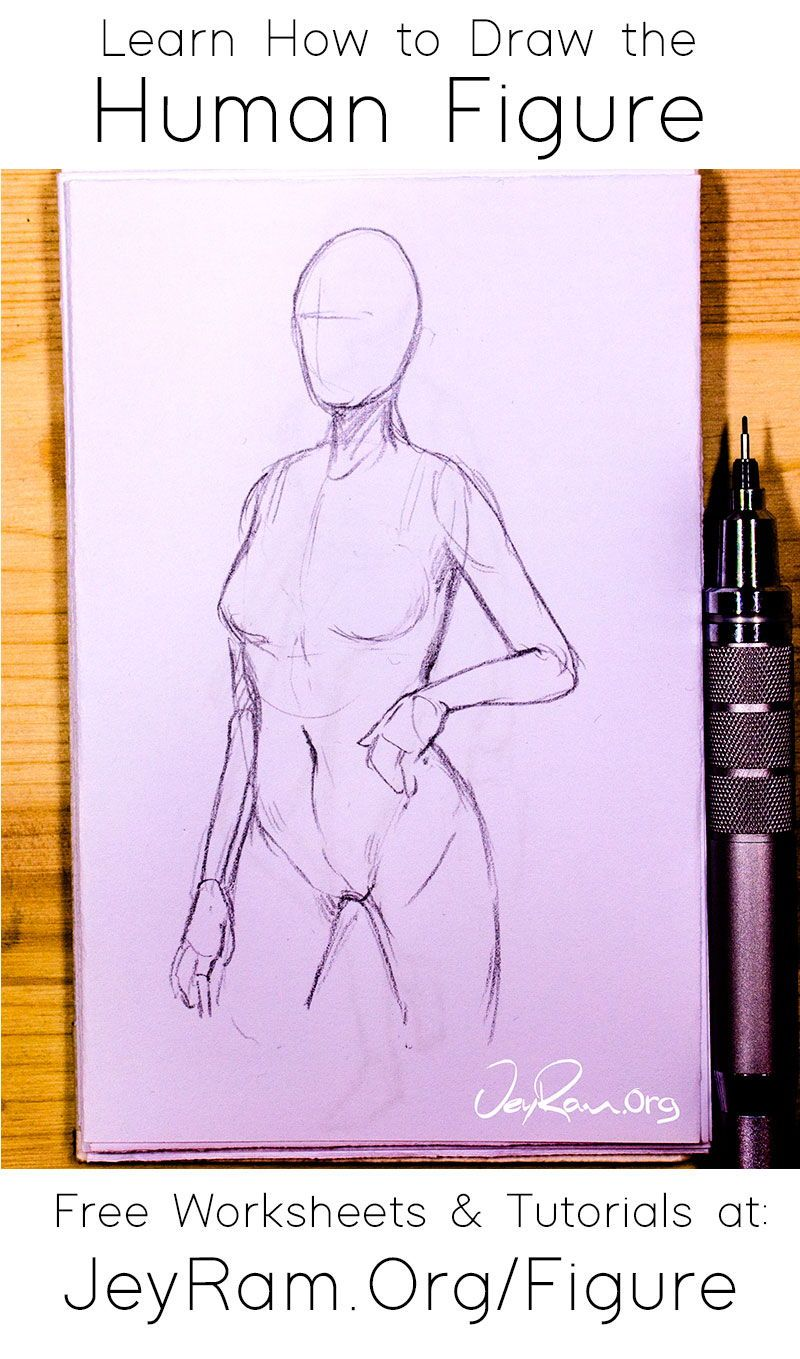 How To Draw The Human Figure In 2020 Figure Drawing Tutorial Human Figure Drawing Tutorial