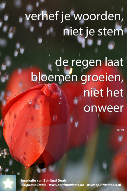 Rumi Citaten Nederlands : Prachtige spreuk verhef je woorden niet stem de