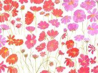 Patterns : Leah Reena Goren