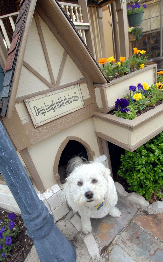 dog house | House, Glass balcony, Play houses
