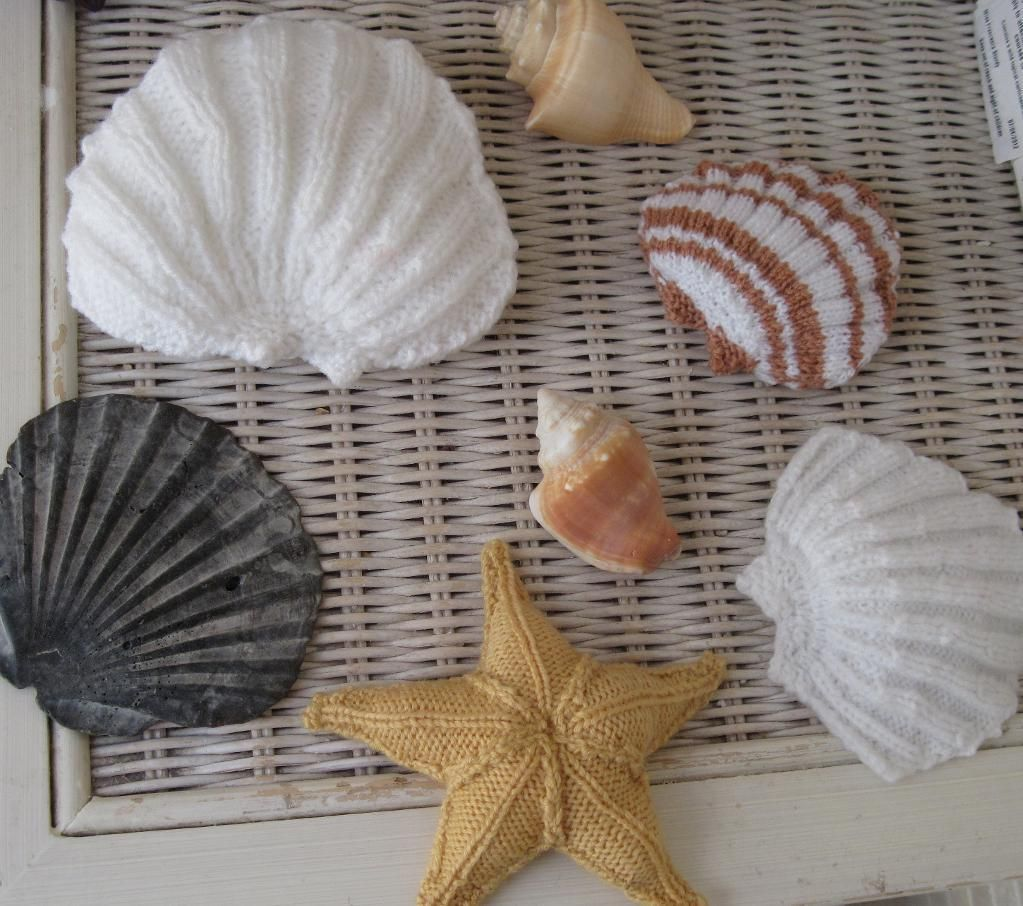 Scallop shell scallop shells patterns and knitting ideas scallop shell pattern on craftsy biocorpaavc Image collections