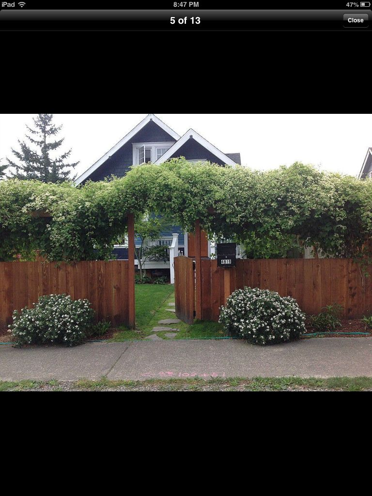I Like The Idea Of A More Private Entry And Front Yard Garden In 2019 Yard Privacy Cottage