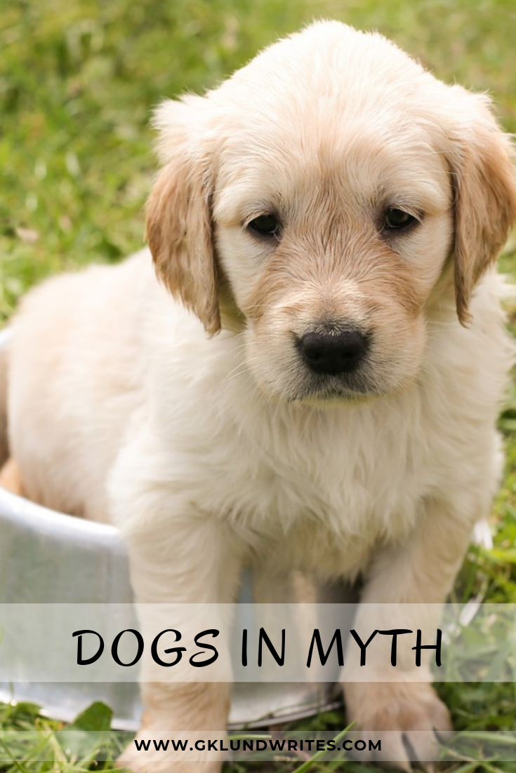 The Loyal Traits Of Dogs Has Followed Them Into Myths Click To