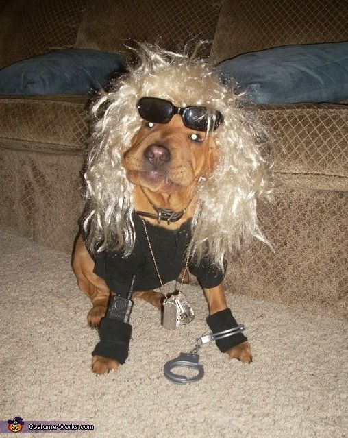 Dog The Bounty Hunter Halloween Costume Contest At Costume Works