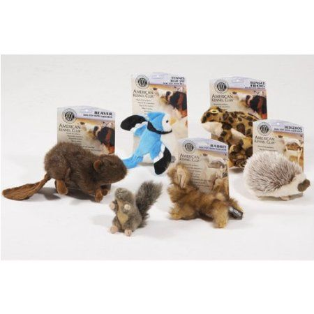 Amazon Com Akc Squirrel Dog Toy Large Pet Supplies Donate To