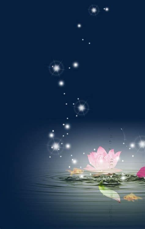 Lotus Star | Mariposas Fondos De Pantalla, Fondo De