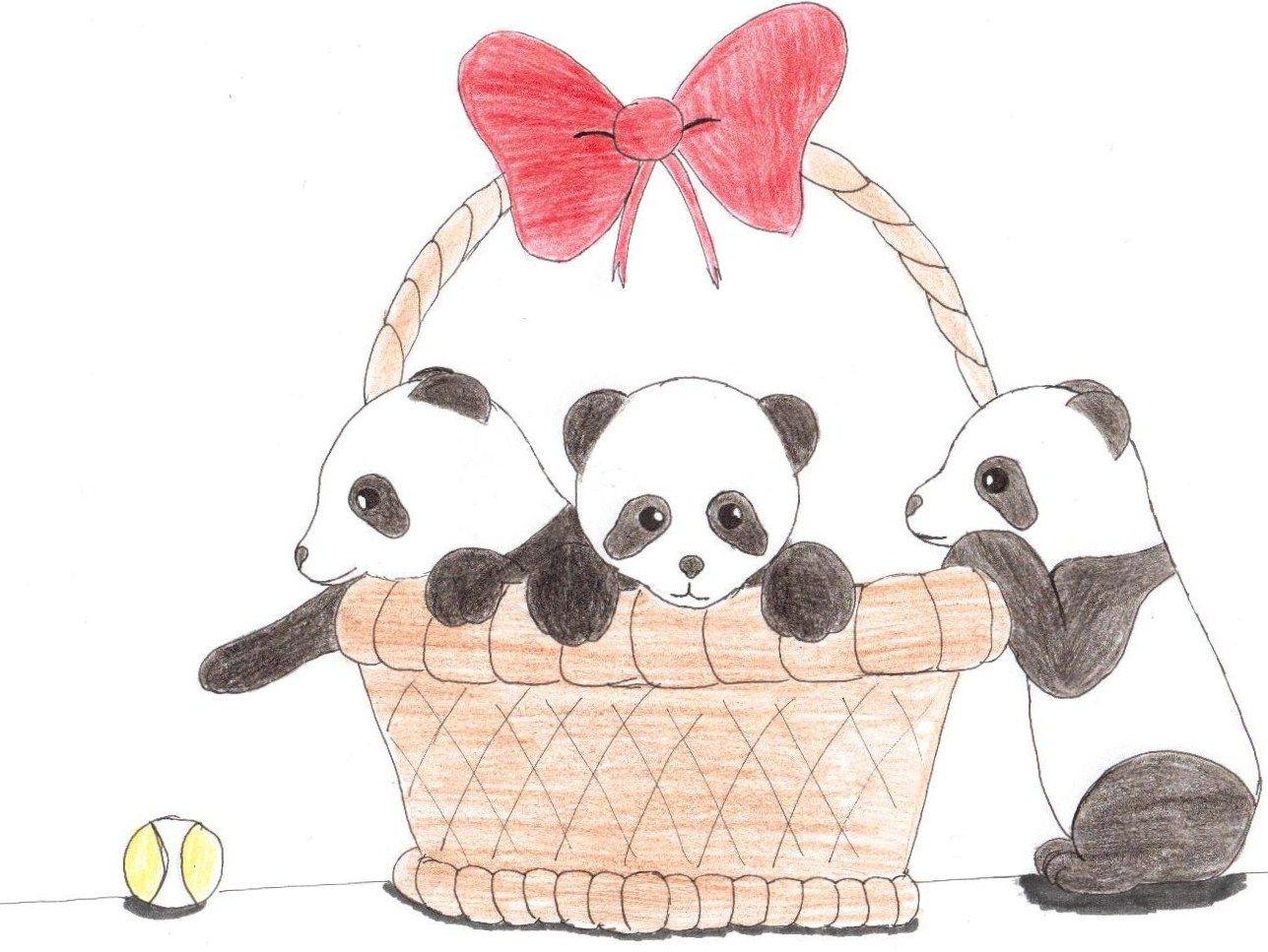 Cute Panda Anime Wallpaper Cute Panda Drawing Panda Drawing Cute Panda