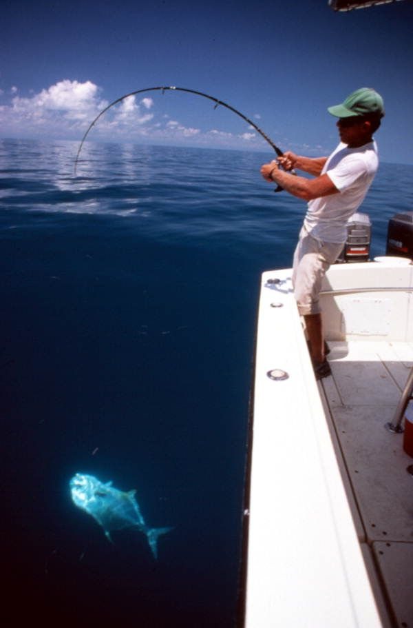 Wrestling With The Catch Of The Day In The Gulf Of Mexico 1991 Florida Memory Salt Water Fishing Sea Fishing Saltwater Fishing