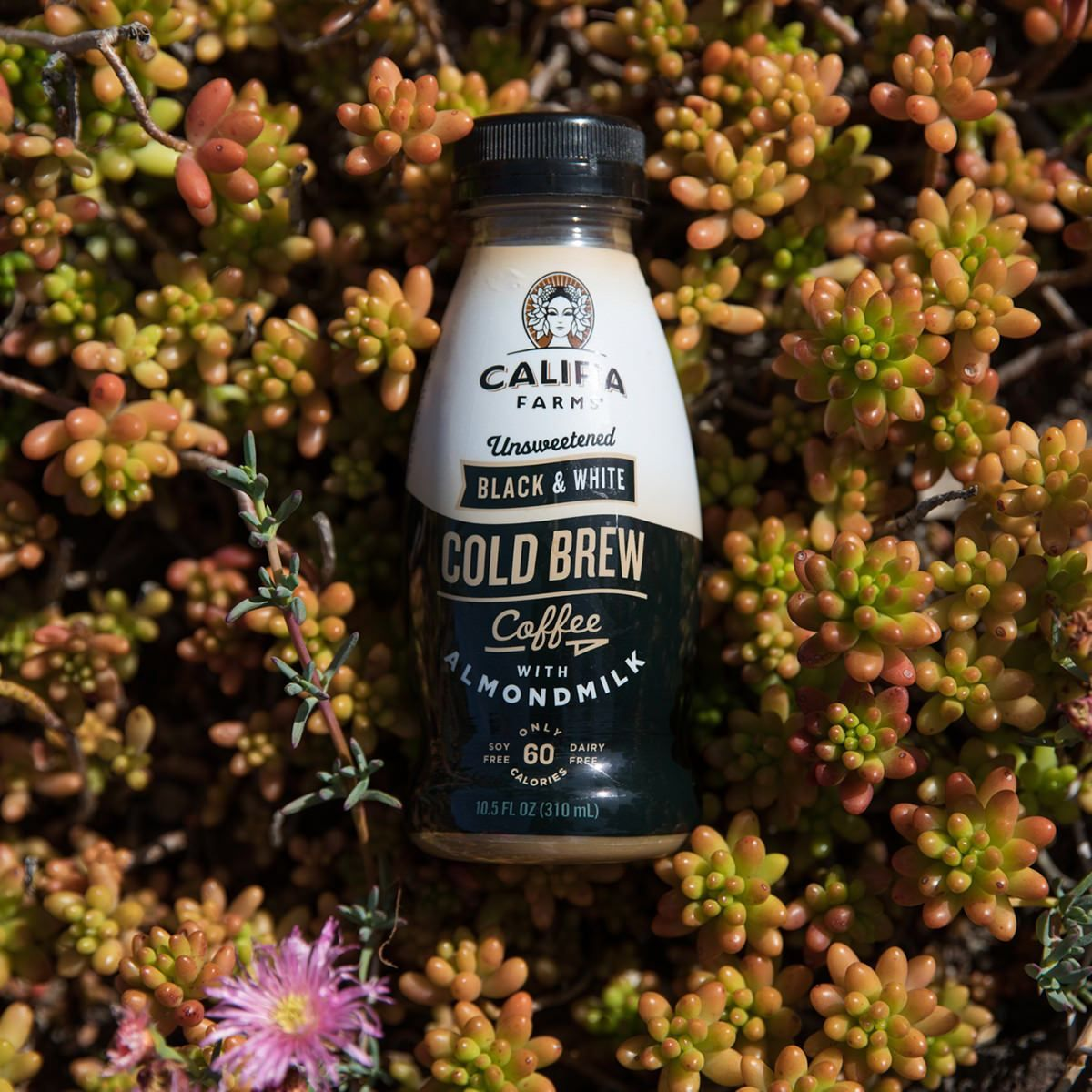 ceb9835c2 Califia Farms Unsweetened Black & White Cold Brew Coffee with Almond 750ml