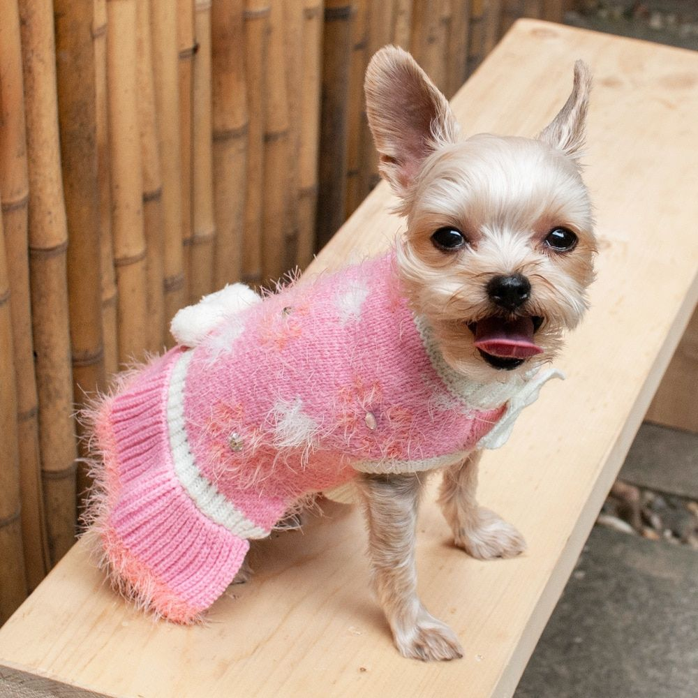 Snowflake Daisy Pink Dog Sweater Dress Cute Dog Clothes Cute