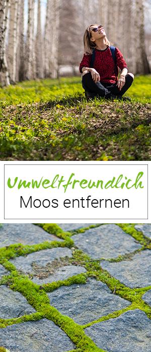 Moos Entfernen Im Garten Und Auf Der Terasse Mit Biologischen