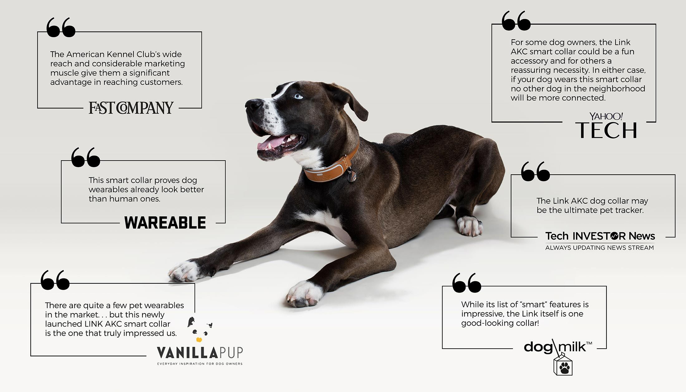 Gps Tracker Activity Monitor And More Dogs Akc Smart Dog