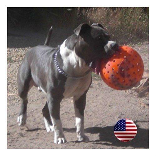 The Big Daddy 10 Unbreakoball Large Dog Toy Bright Orange Pet