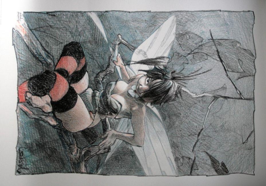 Regis loisel art r gis loisel destins ii manga pen - Fee clochette ombre ...