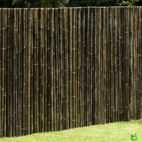 Sichtschutzkombination Mobilane Efeu, Bambus und