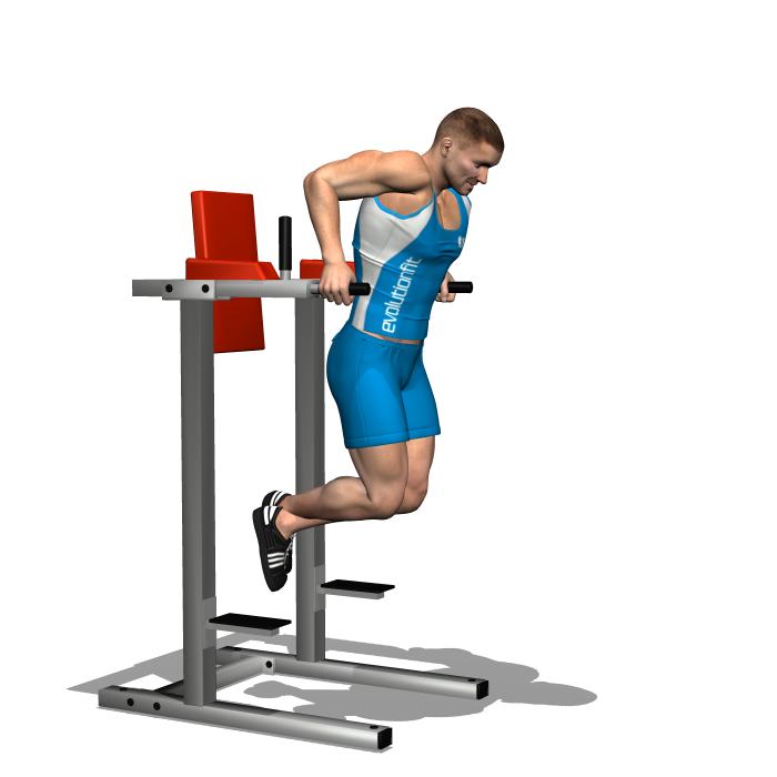 Pin Oleh Ramzi Di Bodybuilding Basics