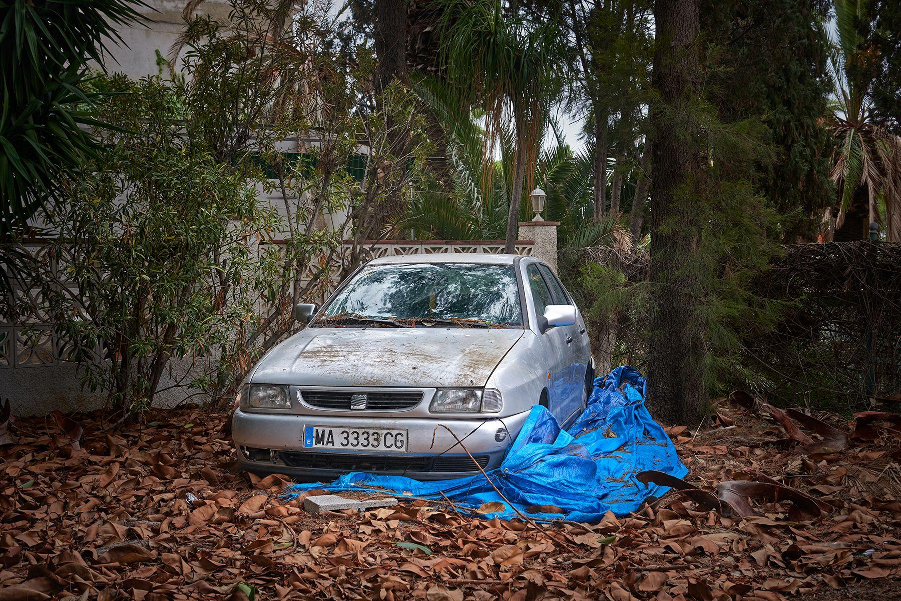 SEAT Ibiza sobre un cielo de hojas
