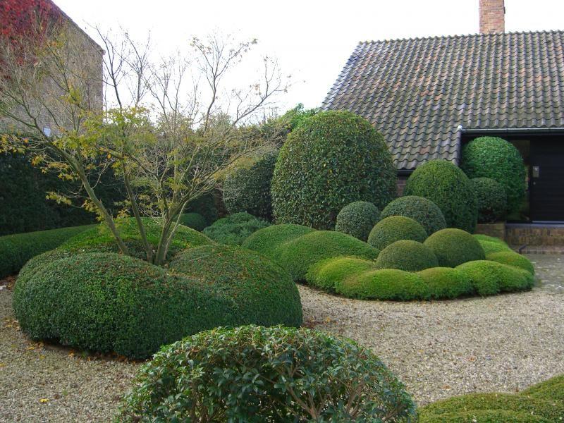 Tuinen In Vorm.Fotogalerij Tuinen Denieplant Aalter Voorbeelden