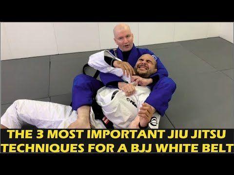 Ammco bus : Jiu jitsu fundamentals john danaher