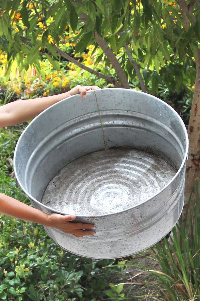 Easy DIY Solar Fountain in 1 Hour! {with Pond Water Plants}