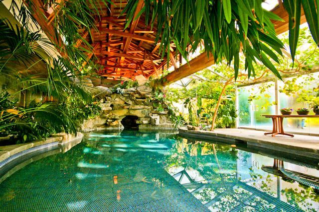 Grottos And Plants Exotic Google Search House