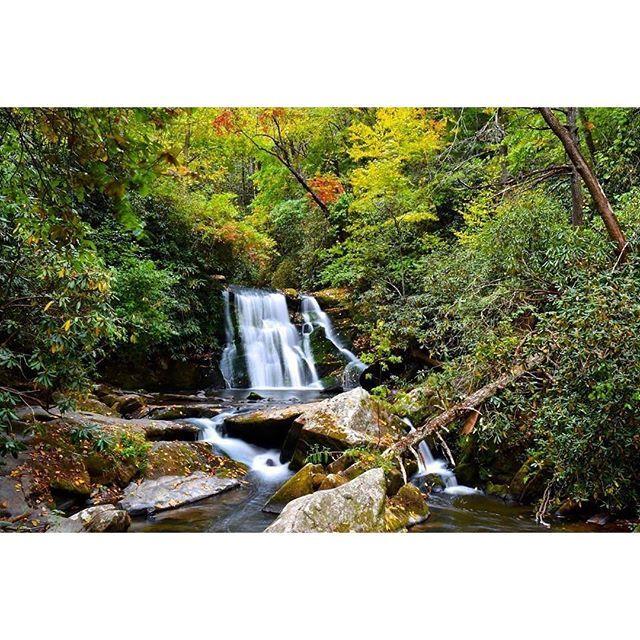 #Repost @adventureravl Beautiful fall colors emerging at #YellowCreekFalls near #RobbinsvilleNC this weekend. #ncfalloffame #visitnc