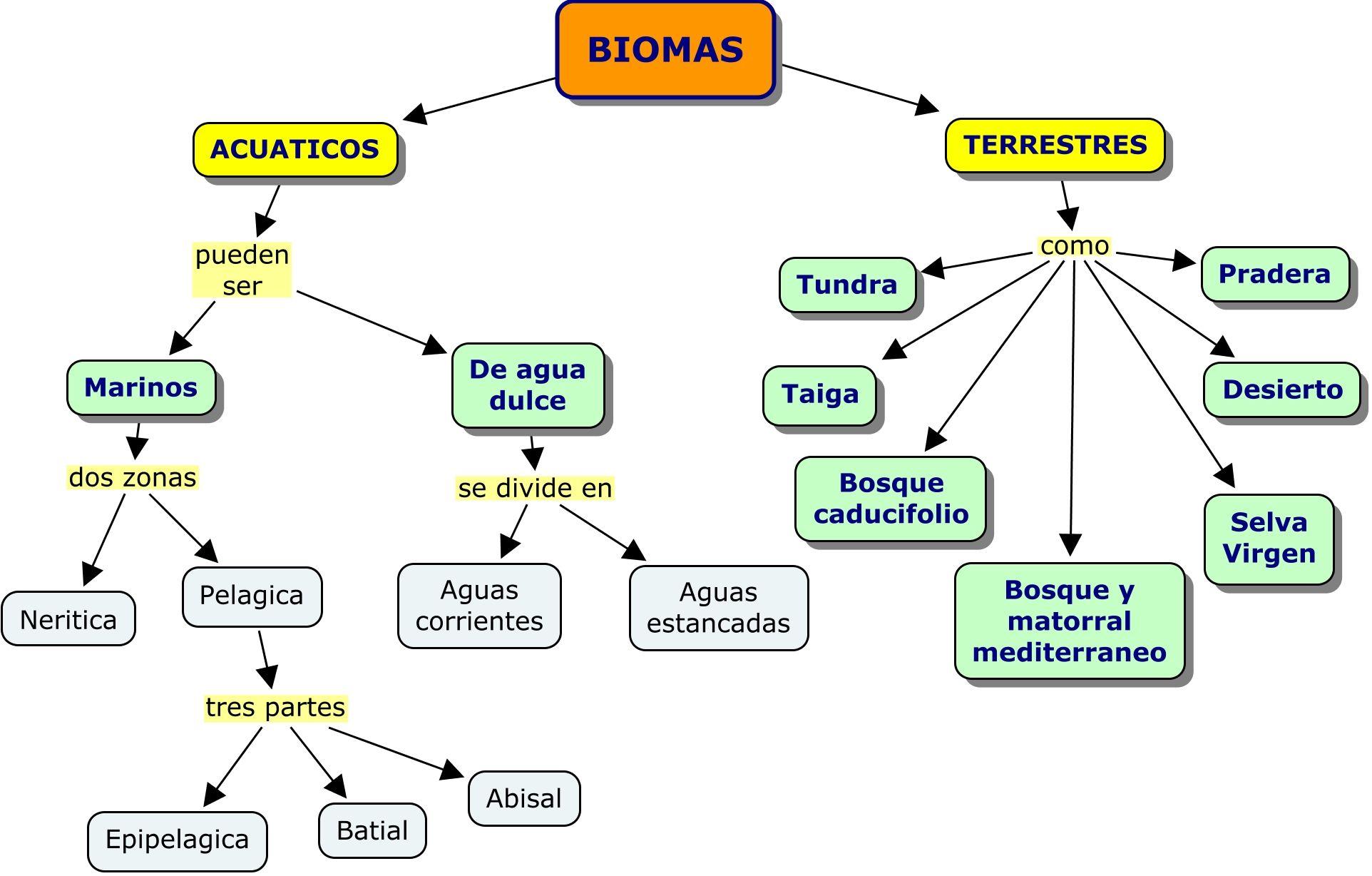 Mapas Conceptuales Biomas Mapa Conceptual Y Bioma Terrestre