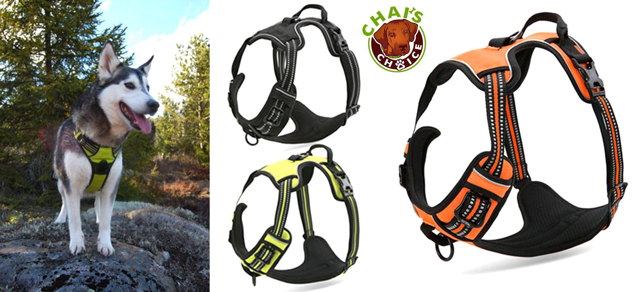 Amazon Com Chai S Choice Best Front Range No Pull Dog Harness
