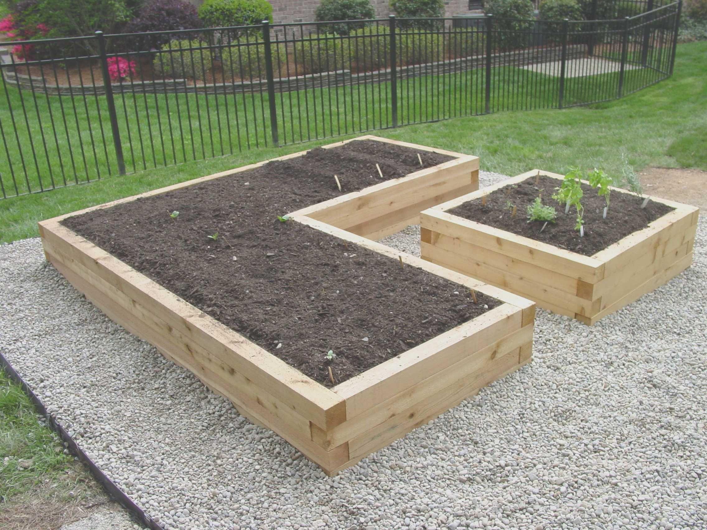 Raised Garden Ideas Diy Vegetable Lovely Raised Garden Ideas Diy Vegetable Pact Ve Able G Vegetable Garden Raised Beds Diy Raised Garden Cedar Raised Garden