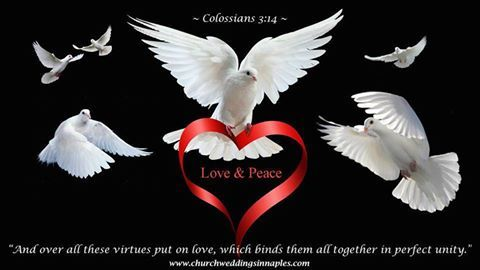 """""""And over all these virtues put on love, which binds them all together in perfect unity."""" #Colossians3:14 #marriage. """""""