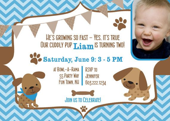 Dog birthday party invitations boy puppy dog party invites 1st dog birthday party invitations boy puppy dog party invites 1st birthday boy first birthday invitations chevron blue brown photo card any age bookmarktalkfo Image collections