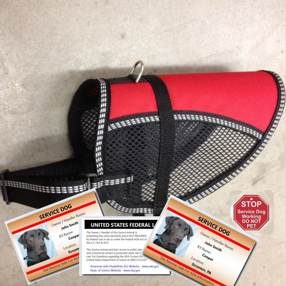 Service Dog Starter Vest Package for Small Dogs Service