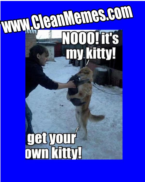(Funny Memes) 2013 12 28 huggy dog n cat Funny animal