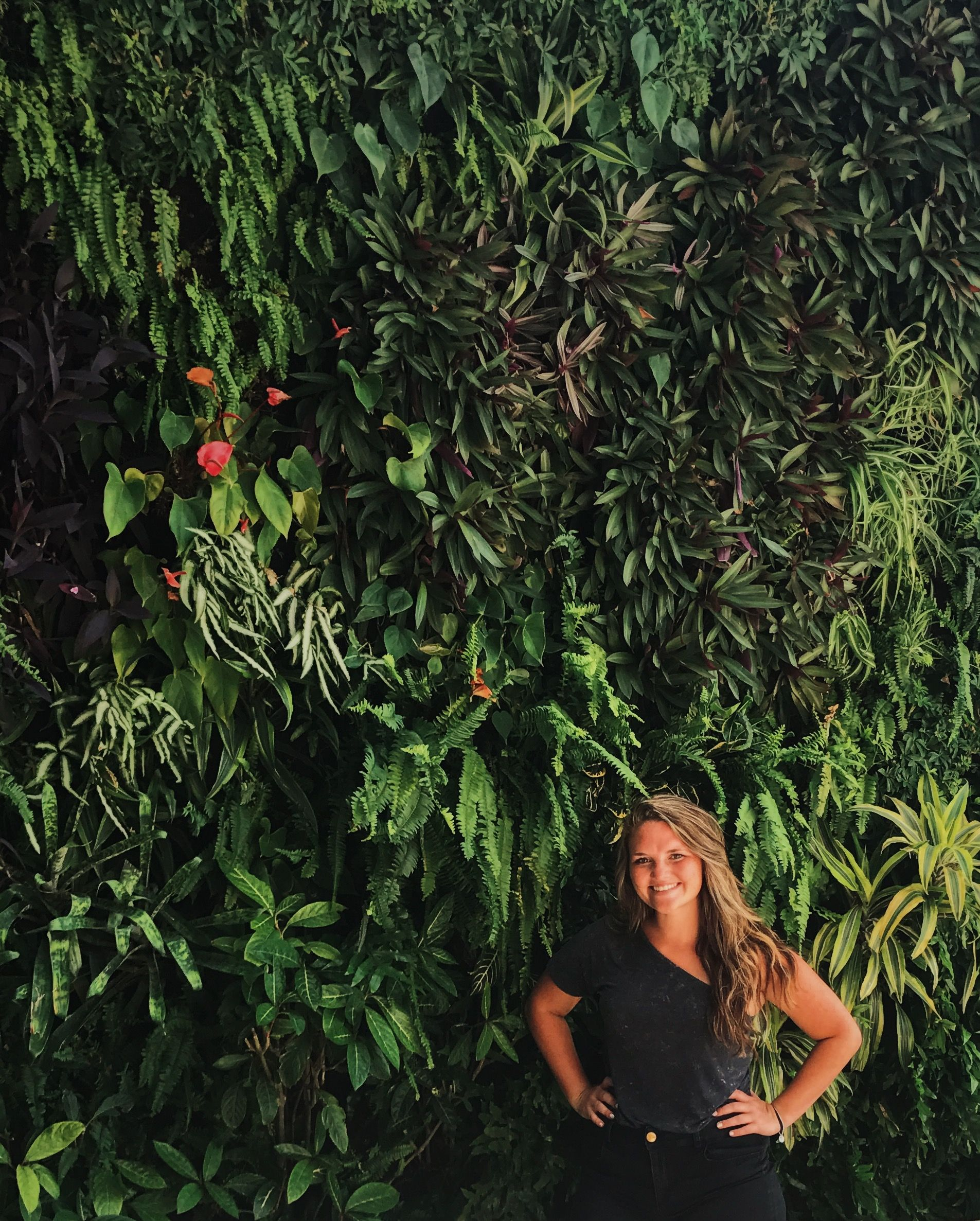 #wynwood #miami #florida #plantwall #greenery #selfie