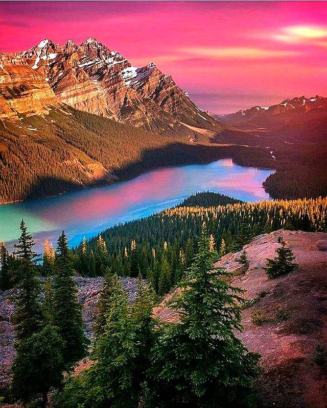 Canada Beautiful Places: Peyoto Lake,in Banff National Park,Canada