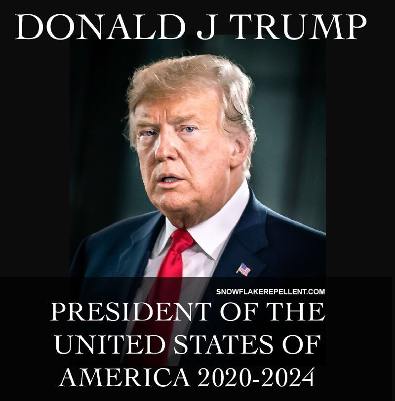 e0b2cca9 DONALD J TRUMP 2020-2024 🇺🇸 - SNOWFLAKE REPELLENT Snowflake-Repellent.com  Trump Red maga hats and Deplorable hats and cloths