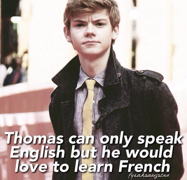 Yeah you're right!!! French is so beautiful!! <<< Je parle le petit fraçais! C'est genial! (I speak a little french! This is awesome!)