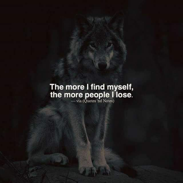 My Pack of Wolves on Twitter