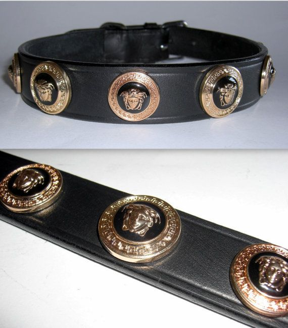 f9131714771 Versace Gold Medusa Head Studded Designer Dog collar.Extra Large  Size.Custom Made In Italy.Bling Up