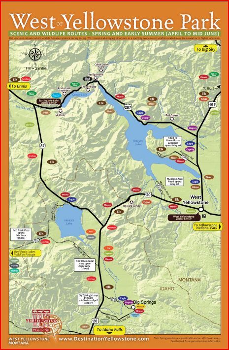 West Yellowstone Montana Map.Don T Miss The Wildlife Sightings Just Outside Yellowstone Park Each