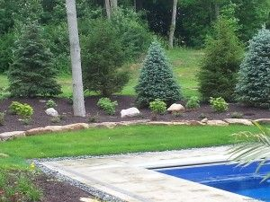 landscaping mounds great