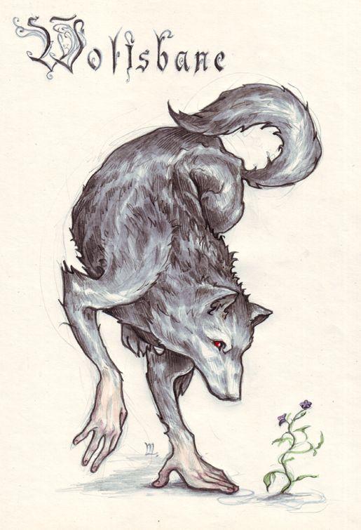 Wolfs Bane in Mocha