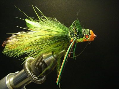 Duluth Mn Fly Fishing Shop Superior Wi Fly Fishing Shop Fly Fishing Shop Fishing Shop Fly Fishing