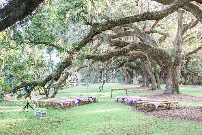 Wedding ceremony under avenue of oaks at Boone Hall Plantation by Catherine Ann Photography