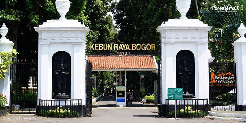 Spot Foto Bagus Di Kebun Raya Bogor