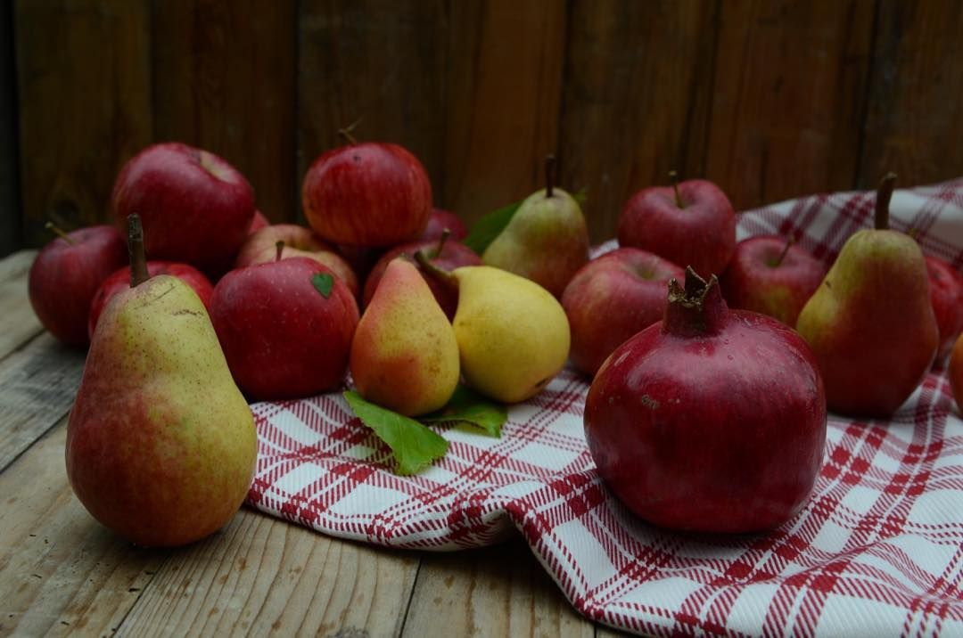 A simple #autumn #harvest from our trees: 3 #apple varieties Angelica #pears & #pomegranate - #thisisfall