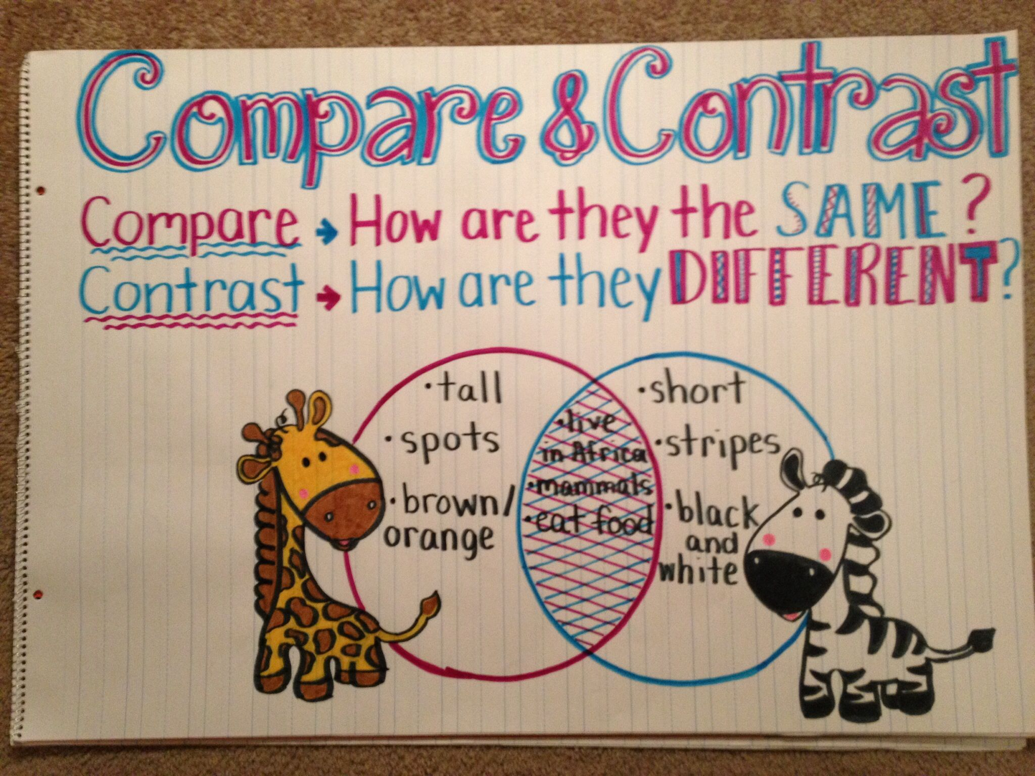 Image Result For Compare Contrast Anchor Chart