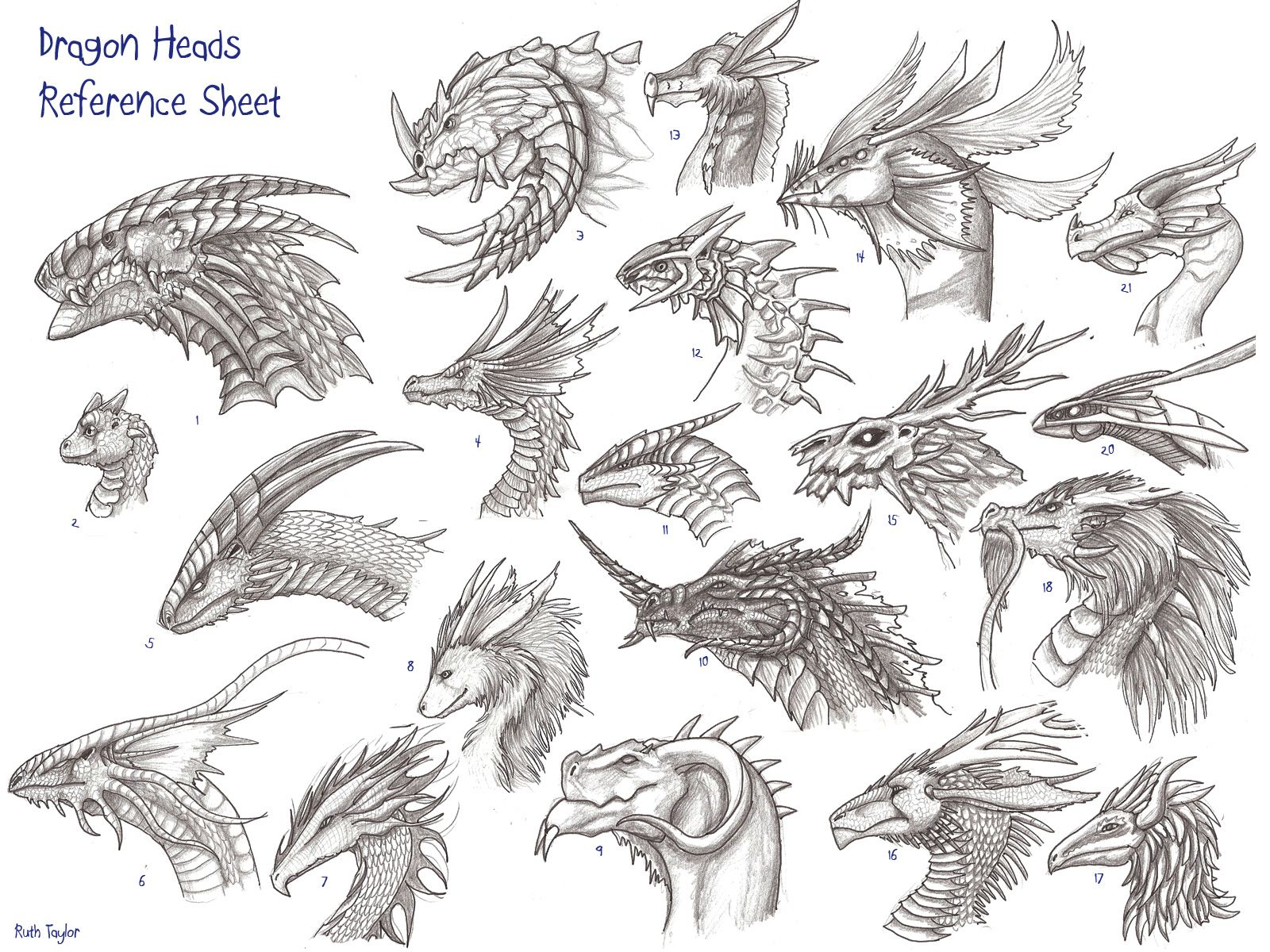 Head Reference Image  Dragon Heads Reference Sheet By Archir On Newgrounds