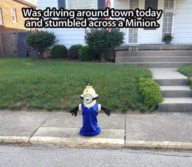 funny minion pictures Will the city get cranky if I do this to the hydrant?